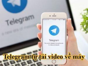 Telegram tự tải video về máy