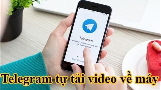 Ứng dụng telegram tự tải video về máy